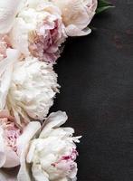 flores de peônia em um fundo preto de concreto foto