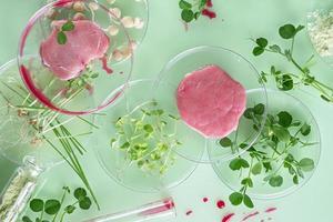 bife cultivado, carne da célula-tronco vegetal, nova inovação alimentar, conceito de carne cultivada em laboratório sem matar