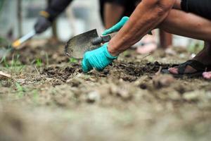 foco seletivo na mão do jardineiro removendo ervas daninhas foto