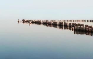 velhas varas de madeira na água foto