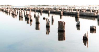 estruturas de madeira na água foto