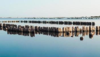 velhos pilares de madeira na água foto