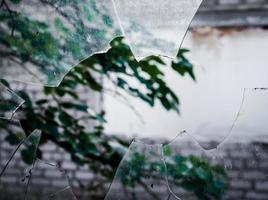 vista de um galho de árvore através de um vidro quebrado foto