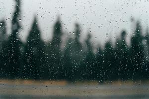 gotas de chuva em vidro com árvores ao fundo