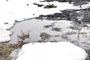poças de primavera e água na terra da dacha foto