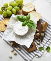 vista de perto do queijo camembert