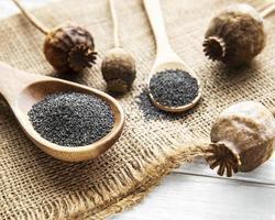 sementes de papoula em pequenas colheres de madeira foto