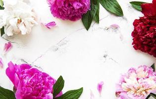 flores peônia em um fundo de mármore foto