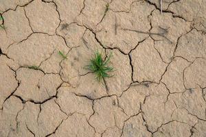 solo seco e rachado em um verão sem chuva foto