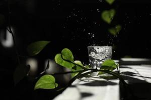 um copo de água em uma mesa branca com um galho de uma folha verde. espirra com os raios do sol. um copo com água