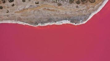 foto de cima para baixo do drone aéreo de um lago rosa natural e da costa genichesk, na Ucrânia. o lago naturalmente fica rosa devido aos sais e pequenos crustáceos artêmicos na água. este milagre é raro.