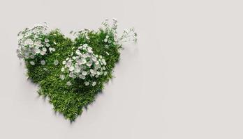coração de grama com flores brancas em fundo branco com copyspace, renderização 3D