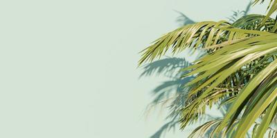 banner de folhas de palmeira em fundo azul com espaço para texto, renderização 3D