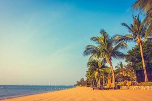 linda praia e mar com palmeiras foto