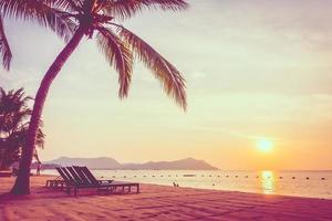 linda praia e mar com palmeira foto