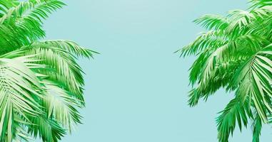 banner de fundo azul com palmeiras nas laterais, renderização em 3D