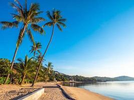 linda praia tropical e mar com coqueiro