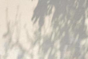 cópia espaço parede de concreto branco com sombras foto