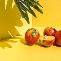 vista frontal de pêssegos brilhantes com sombras sólidas em fundo amarelo dinâmico foto