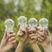 mãos segurando lâmpadas no ar na natureza