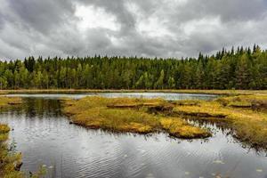 pequeno lago de pesca na Suécia foto
