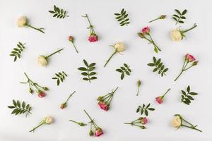 vista de cima coleção de flores na mesa foto