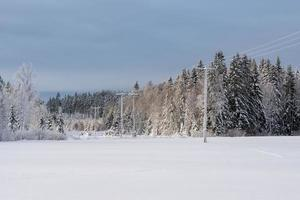 linhas de energia cruzando uma paisagem de inverno na Suécia foto