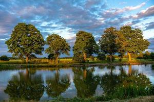 canal gota com árvores verdes sob o sol dourado da tarde foto