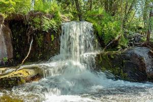 pequena cachoeira em uma floresta verde na Suécia foto