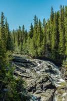 riacho no norte da Suécia foto