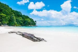 fundo de linda praia tropical foto