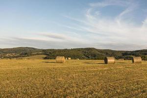 conceito de outono com grandes rolos de feno em um campo durante o dia foto