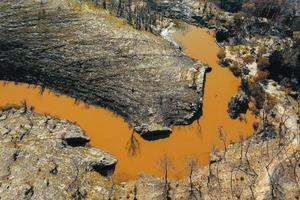 drone fotografia aérea de regeneração florestal após intenso incêndio florestal na Austrália foto