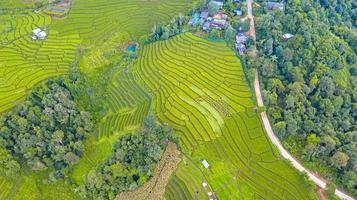 vista aérea dos verdes arrozais em socalcos foto
