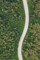 vista aérea superior do caminho da estrada na floresta, vista do drone foto