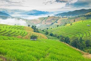 montanhas e terraços de arroz no norte da Tailândia foto