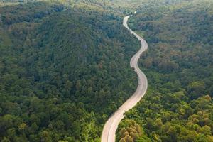 vista aérea do caminho da estrada na floresta, vista do drone foto