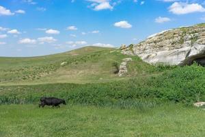 a paisagem natural com vista para as falésias brancas e grutas. foto