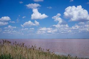 paisagem natural com lago de sal rosa. foto