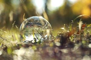 uma bola de lente em uma floresta de outono foto