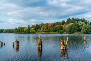 bela vista de um lago e árvores foto