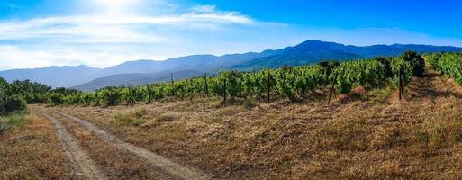 panorama da paisagem natural com a estrada. foto