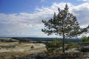 a paisagem natural do cuspe Kursk foto