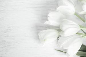 flores de tulipas em madeira branca com espaço de cópia foto