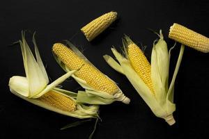 vista superior composição de milho fresco foto