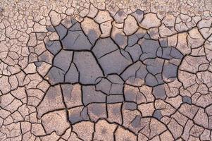textura de turfa seca quebrada com um pouco de umidade foto