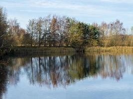 árvores refletidas nos pântanos da caverna do norte, yorkshire leste, inglaterra foto
