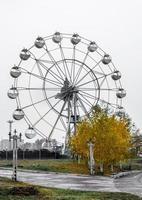roda gigante com árvore de outono amarela brilhante contra o céu cinza foto