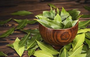 folhas frescas de louro em uma tigela de madeira em fundo escuro foto
