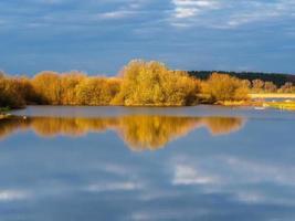 reflexão de inverno em pântanos em wheldrake ings norte de yorkshire, inglaterra foto